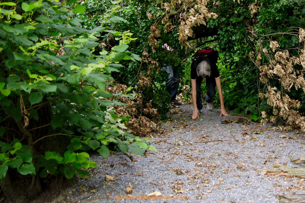 2014-07-05_Wandern_04